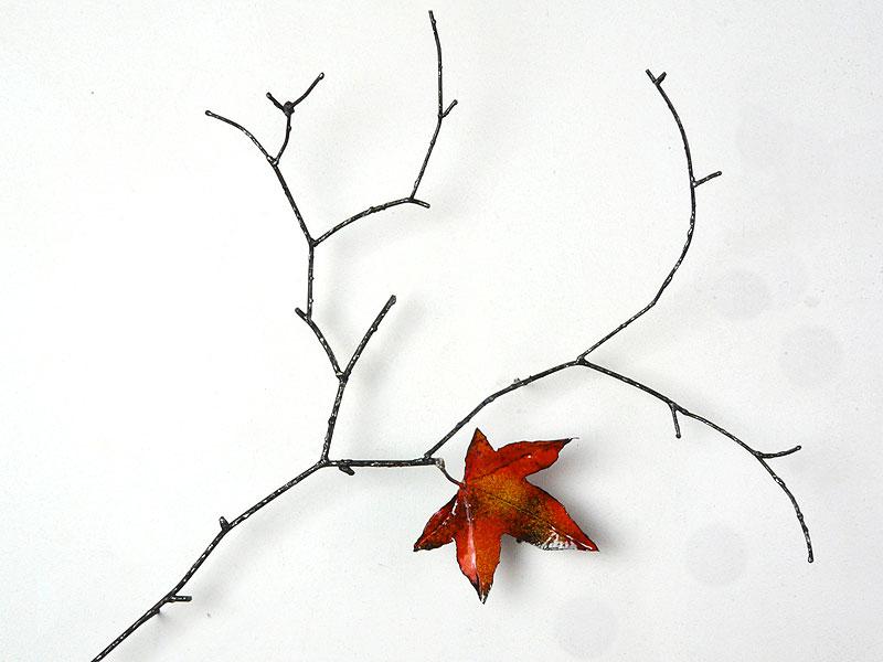 Meine Philosophie - Natur -Herbstblatt